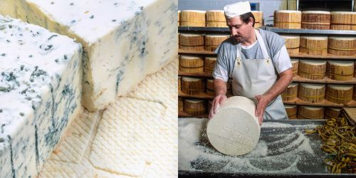 b-app-italian-cooking_Gorgonzola-cheese-with-blue-mold.jpg